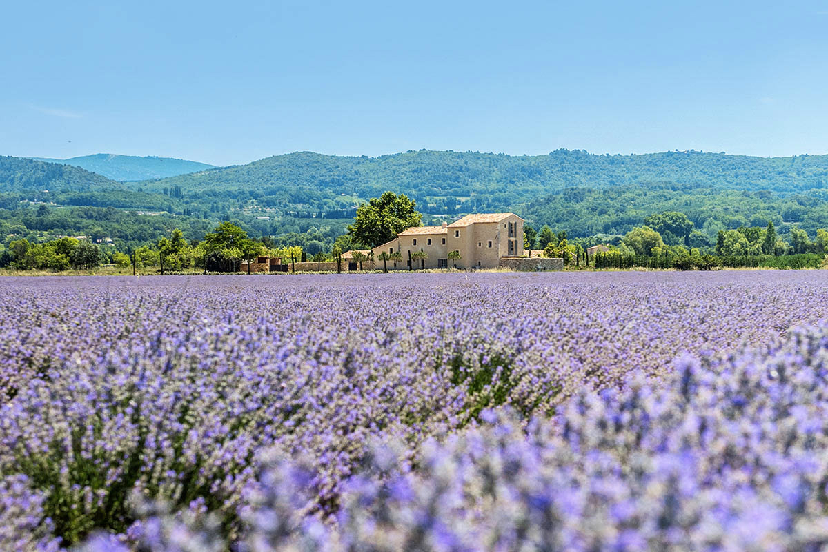 mas-du-fer-a-cheval holiday home for rent south of france