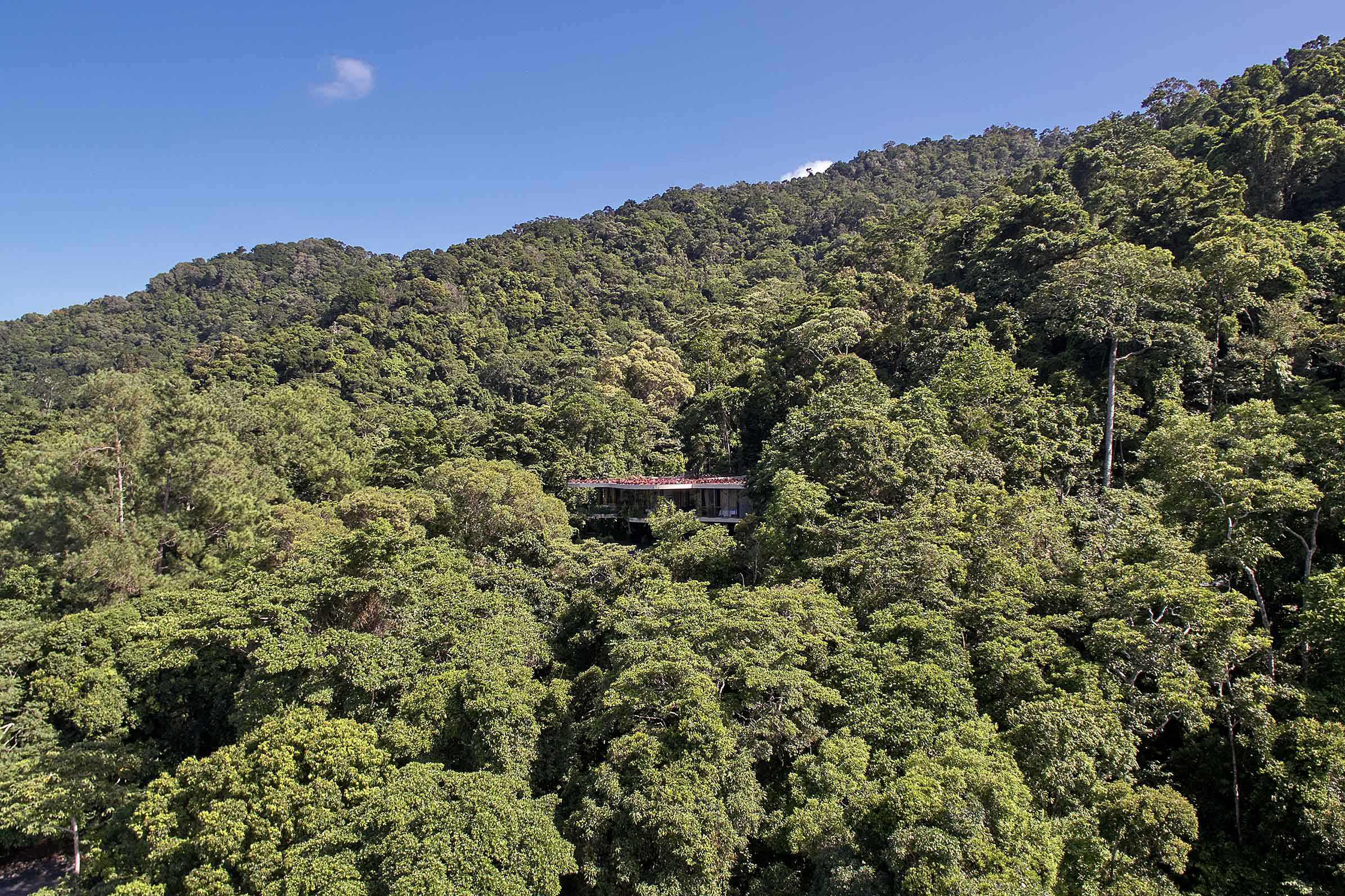 Planchonella House in Edge Hill, Cairns