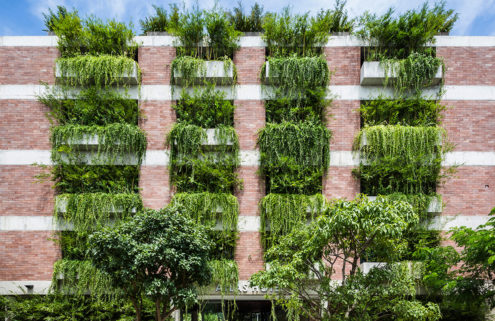 How Vietnam's architects are embracing biophilic design