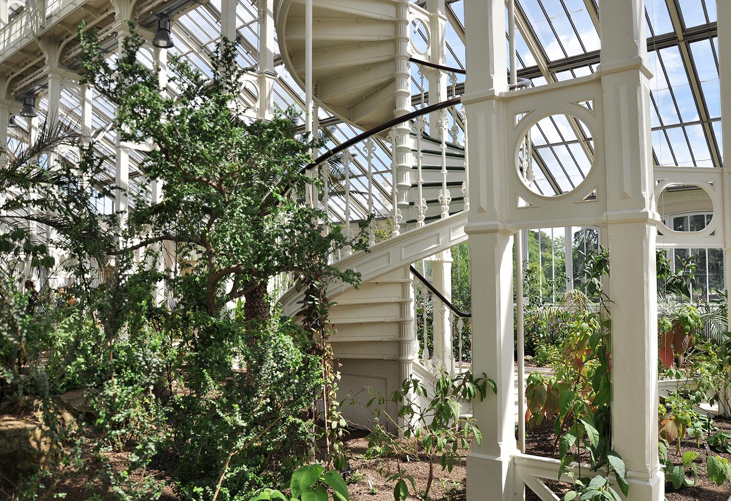 Explore Kew Gardens' freshly restored Temperate House