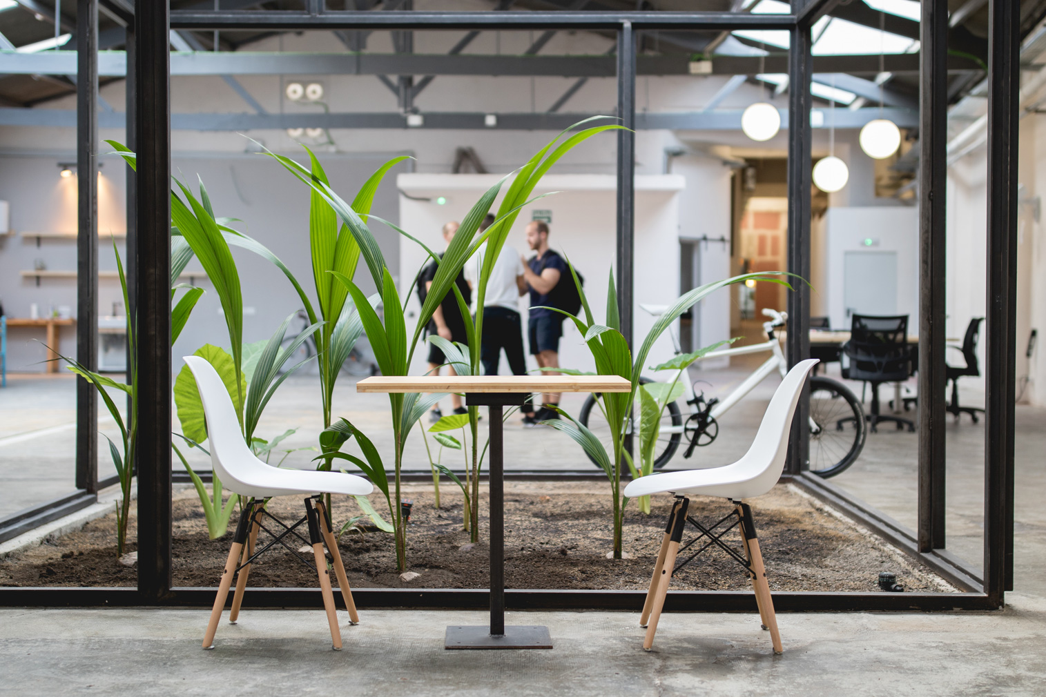 Abandoned Barcelona warehouse becomes a coworking space