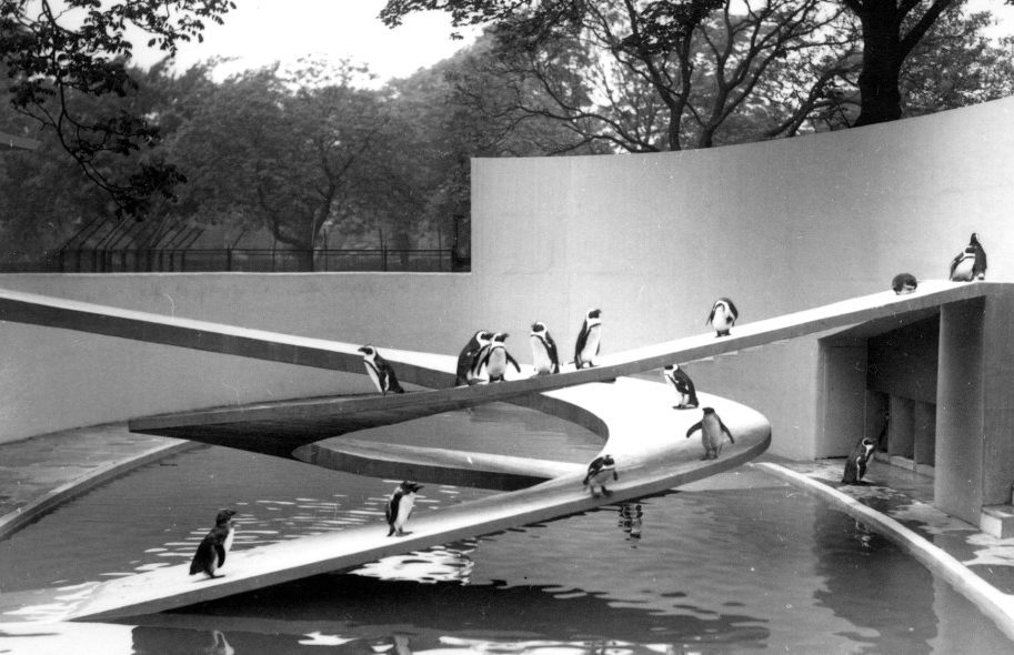 Picture of the Penguin Pool in the 1930s