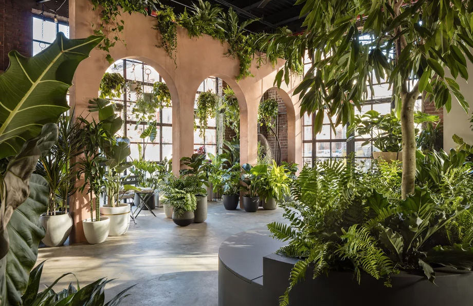 Greenery Unlimited -- a plant lover's paradise in Brooklyn