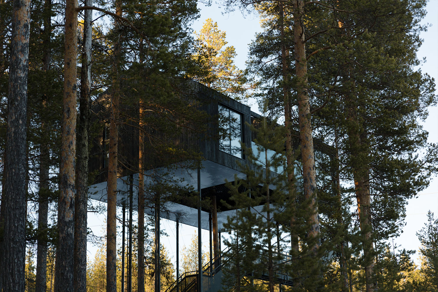7th room at the tree hotel in Swedish lapland