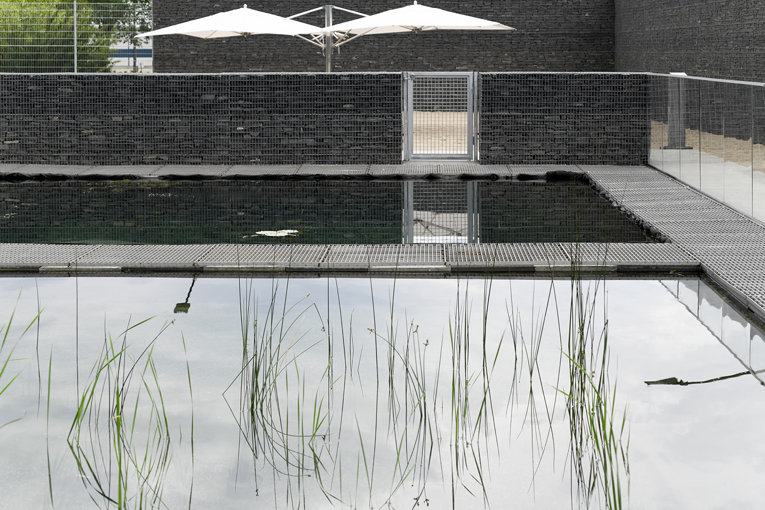This 'living' swimming pool is a first in Canada designed by gh3