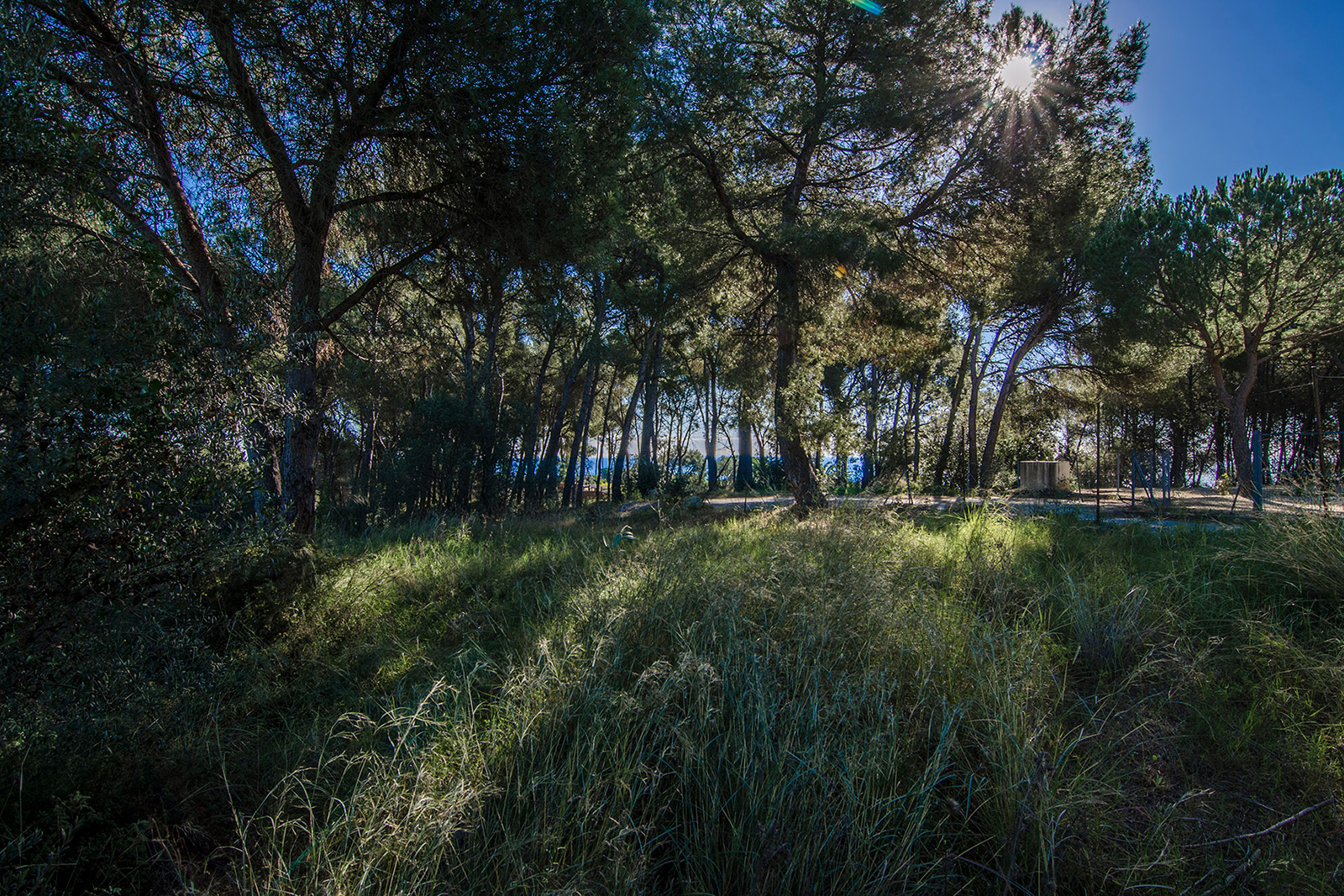 Plot of land for sale in Barcelona