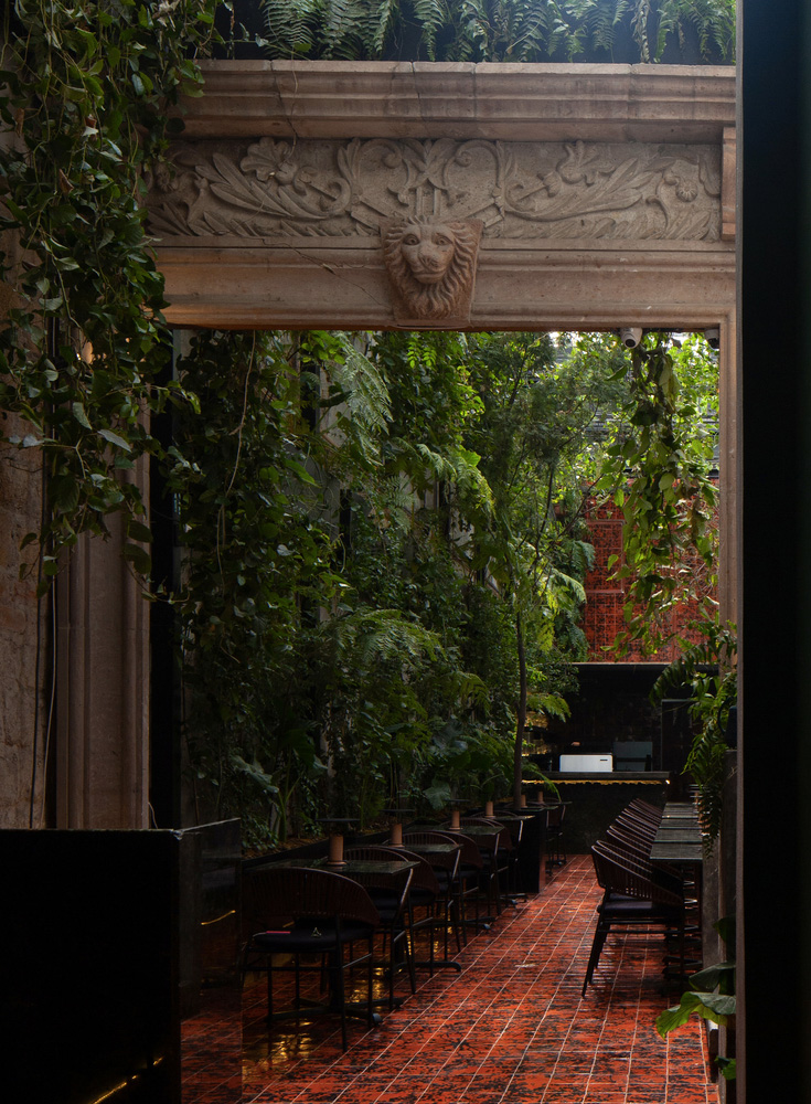 Creepers cover the walls of Mexico City's Xuva restaurant