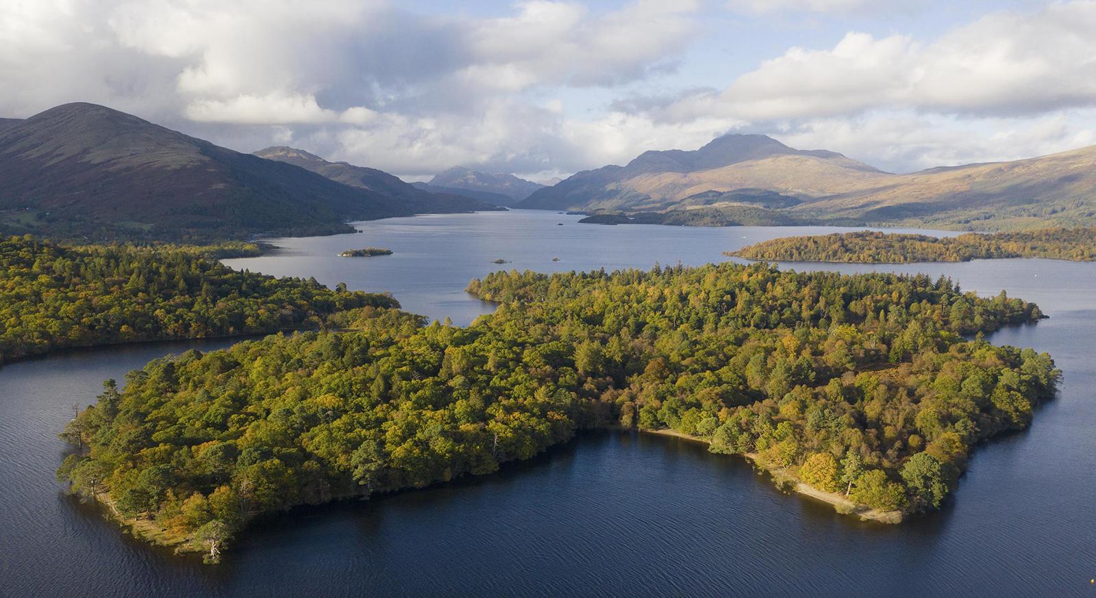 Inchconnachan or 'Wallaby Island' in Loch Lomand, Scotland