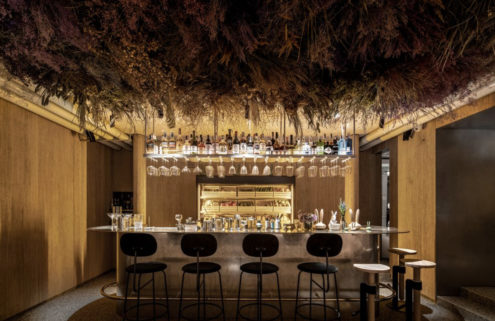 Grass sprouts from the ceiling of Kyiv bar Rabbit Habit