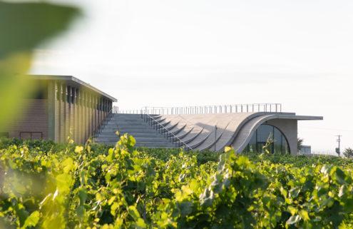 Lahofer winery offers a taste of brutalism among Dobšice's vineyards