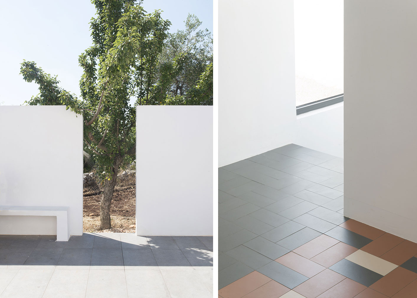 The house is blanketed by white-washed walls, with openings that frame the landscape and surrounding olive trees