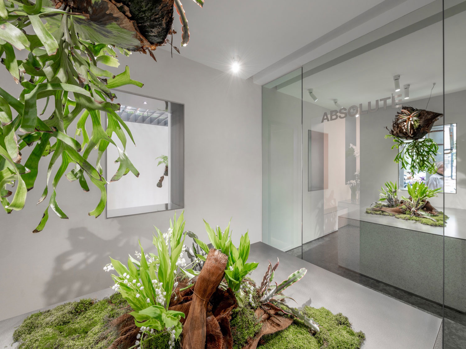 Shanghai's Absolute Flowers concept store a white-cube gallery for plants