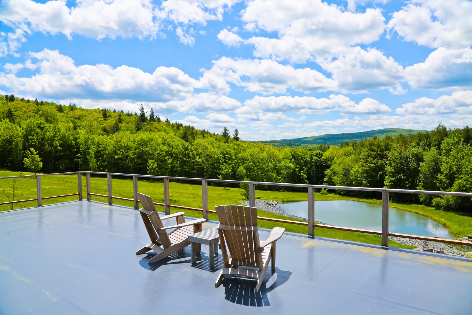 Flat roofs double as observation points and are a major selling point of the house, which has panoramic forest views