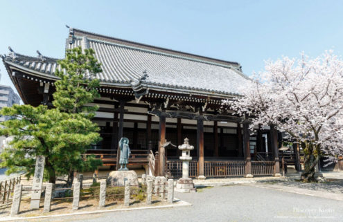 Japan's Honpō-ji Temple is hosting a digital concert to mark cherry blossom season