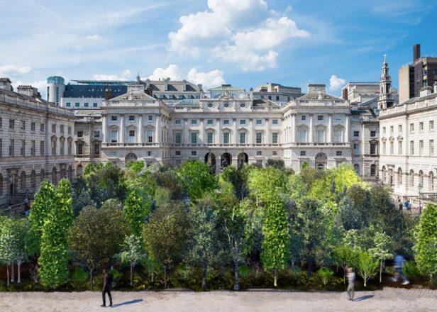Somerset-House-Es-Devlin-forest-London-Design-Biennale