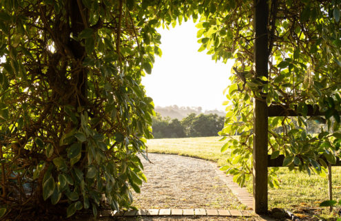 Explore a pair of hidden homes in the Byron hinterland