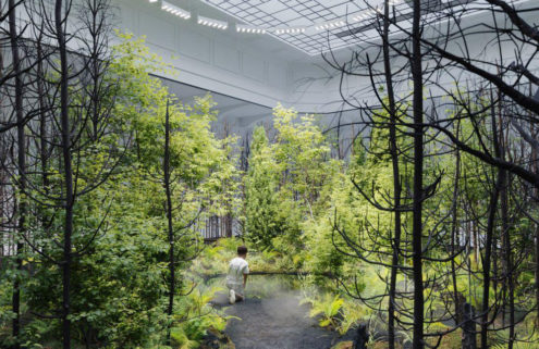 Nature takes over Vienna's Museum of Applied Arts with pop-up forest