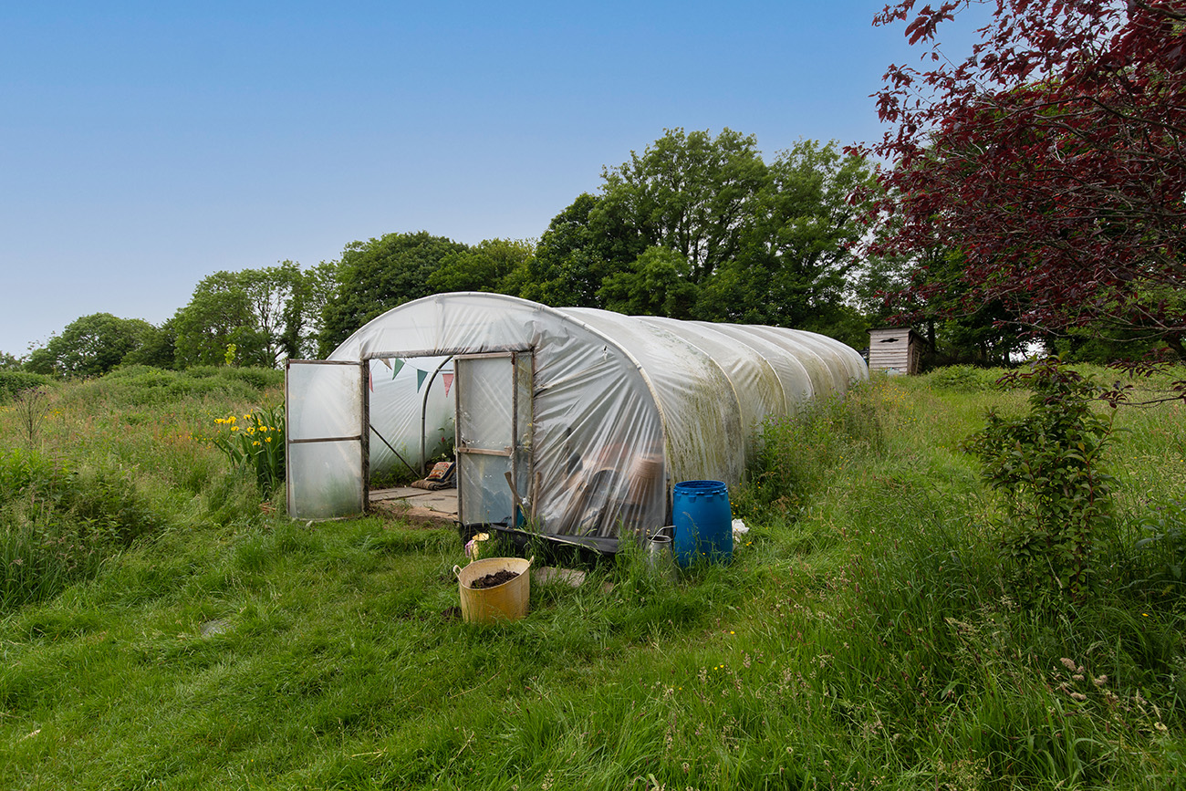 Four acres of land provides enough space to cultivate food for the house's owners and also sell whatever is left