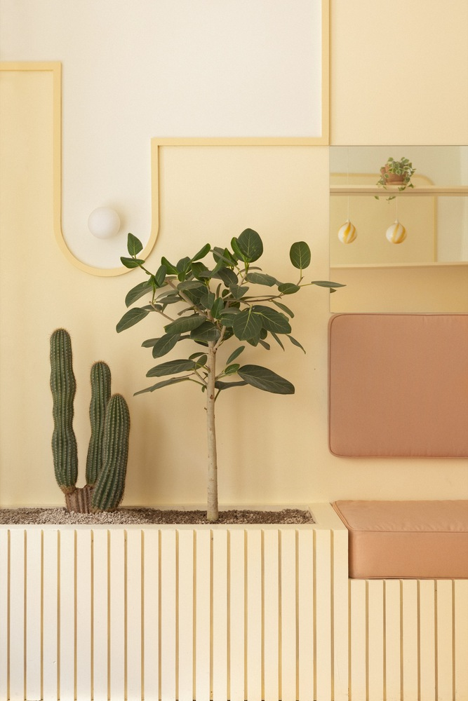 Curves, lemon and salmon pink hues heighten the tropical Cuban vibe