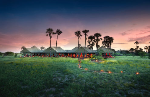 Pitch perfect: meet the new generation of tented safari camps