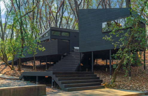 This northern California home unfurls across the forest floor as a series of interconnected pavilions